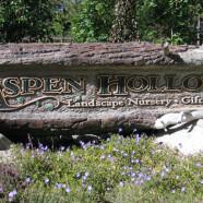 Aspen Hollow Sign