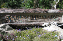 Aspen Hollow Sign